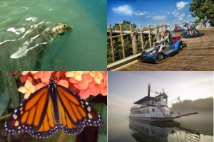 Just a few of the things at Branson Attractions that you might not know about.