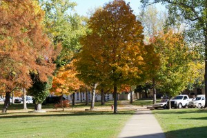 Late October shot of foliage on campus of College of the Ozarks.