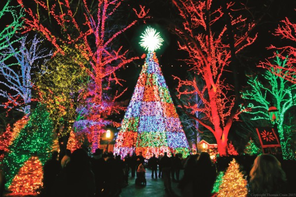 Silver Dollar City's acclaimed dazzling 5-story special effects Christmas Tree.