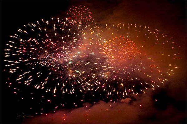 A beautiful firework burst lighting up the Brasnon sky!